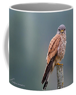 Perching Coffee Mug