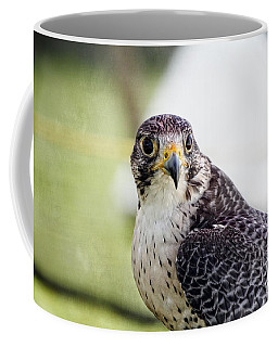 Coffee Mug featuring the photograph Peregrine Falcon Bird Of Prey by Eleanor Abramson