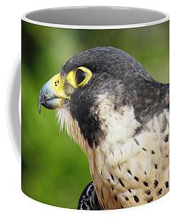 Coffee Mug featuring the photograph Peregrine Falcon by Cynthia Guinn