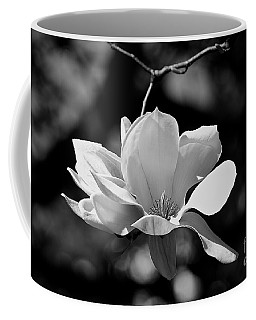 Perfect Bloom Magnolia In White Coffee Mug