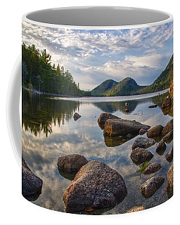 Perfect Pond Coffee Mug
