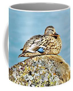 Perfect Resting Rock Coffee Mug