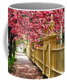Coffee Mug featuring the photograph Perfect Time For A Spring Walk by Jeff Folger