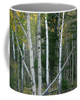 Perfection In Nature Coffee Mug
