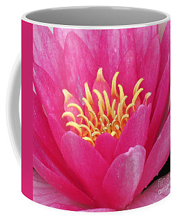 Perry's Fire Opal Water Lily Coffee Mug