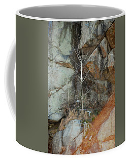Coffee Mug featuring the photograph Perseverance by Mim White