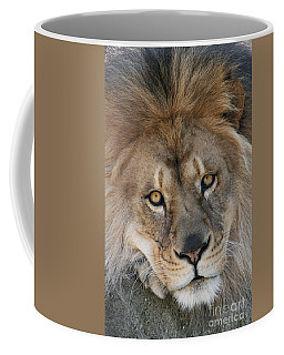 Pet Me Coffee Mug by Judy Whitton