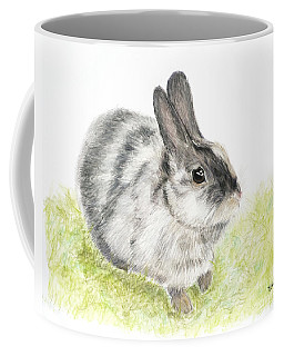 Pet Rabbit Gray Pastel Coffee Mug
