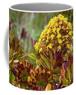 Petal Dome Coffee Mug by Melinda Ledsome