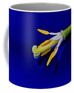 Petal-less Flower On Bright Blue Coffee Mug