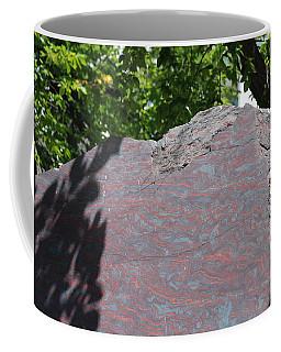 Petrified Wood On Display Coffee Mug