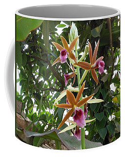 Phaius Orchids Coffee Mug by Kay Gilley