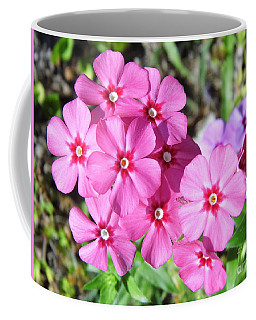 Coffee Mug featuring the photograph Phlox Beside The Road by D Hackett