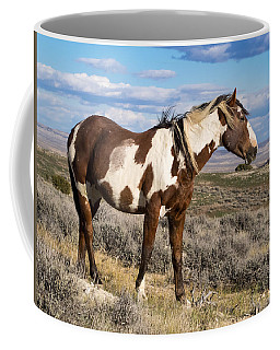 Picasso Of Sand Wash Basin Coffee Mug by Nadja Rider
