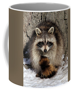 Picture Perfect Coffee Mug