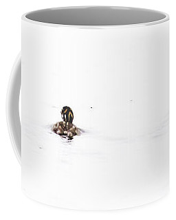 Pied-billed Grebe Babies Coffee Mug