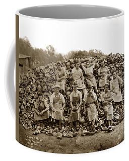 Pierce Brothers Abalone Morro Bay Circa 1925 Coffee Mug