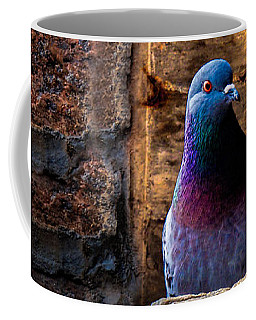 Pigeon Of The City Coffee Mug