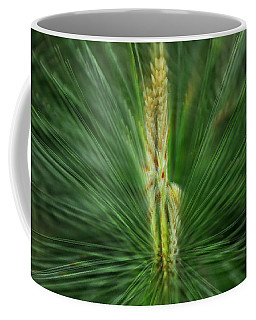 Pine Cone And Needles Coffee Mug