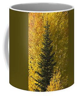 Pine In Aspens Coffee Mug