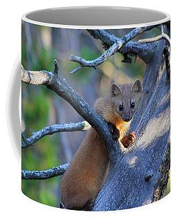 Pine Martin Coffee Mug
