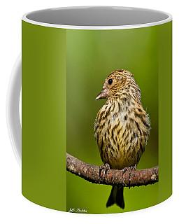 Pine Siskin With Yellow Coloration Coffee Mug