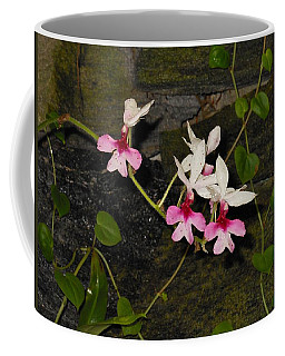 Pink And White Orchids Coffee Mug by Kay Gilley