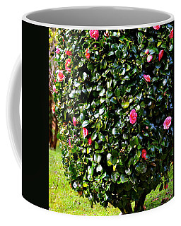 Pink Camellia Bush Coffee Mug