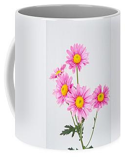 Pink Dasies Coffee Mug