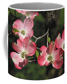 Coffee Mug featuring the photograph Pink Dogwood by William Norton