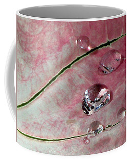 Pink Fancy Leaf Caladium - September Tears Coffee Mug