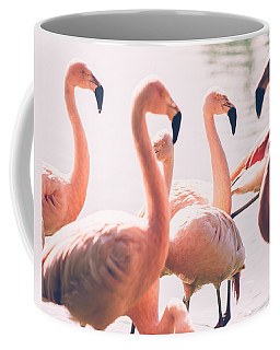 Pink Flamingo Flock Coffee Mug