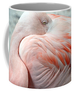Coffee Mug featuring the photograph Pink Flamingo II by Robert Meanor