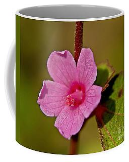 Coffee Mug featuring the photograph Pink Flower by Olga Hamilton