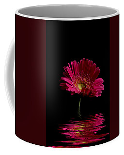 Pink Gerbera Flood 1 Coffee Mug