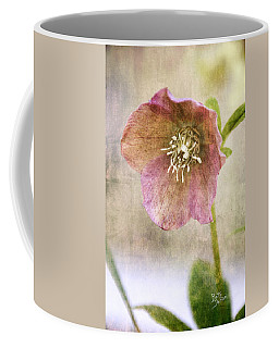 Coffee Mug featuring the photograph Pink Hellebore by Betty Denise