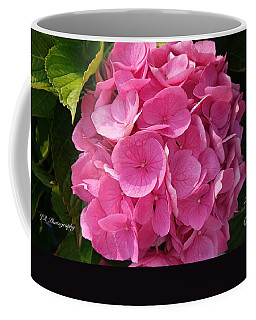 Coffee Mug featuring the photograph Blushing Rose by Jeannie Rhode