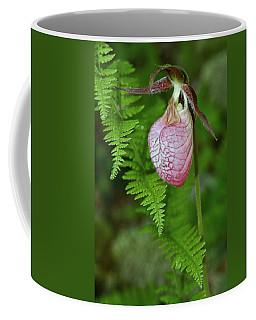 Pink Lady Slipper Coffee Mug
