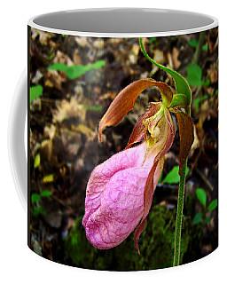 Pink Ladyslipper Orchid Coffee Mug