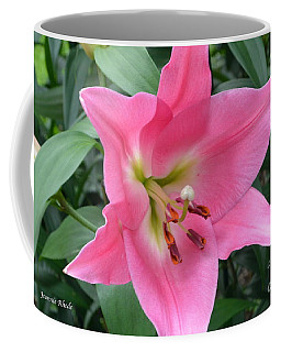 Coffee Mug featuring the photograph Pink Lily by Jeannie Rhode