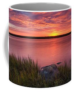 Pink Marsh Coffee Mug