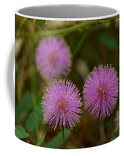 Pink Mimosa Coffee Mug by Kim Pate