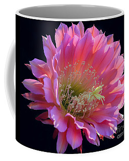 Pink Night Blooming Cactus Flower Coffee Mug by Tamara Becker