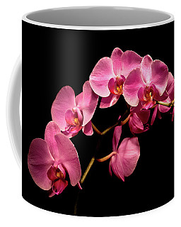 Pink Orchids 3 Coffee Mug