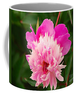 Coffee Mug featuring the photograph Pink Peony by Mary Carol Story