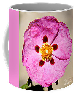 Pink Rock Rose Coffee Mug by Suzanne Oesterling
