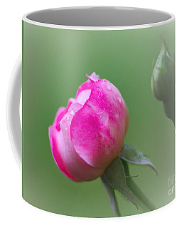 Pink Rose And Raindrops Coffee Mug
