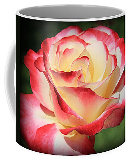 Coffee Mug featuring the photograph Pink Rose by Athala Carole Bruckner