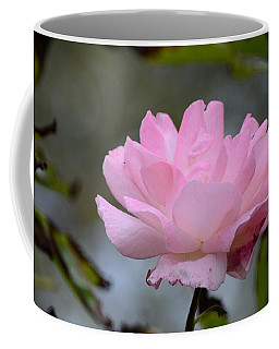 Coffee Mug featuring the photograph The Last Rose by Debra Martz