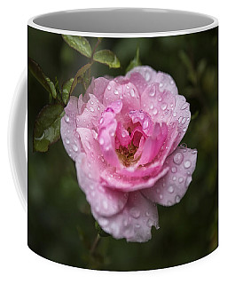 Pink Rose With Raindrops Coffee Mug